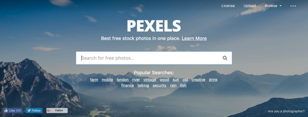 pexels stock photos