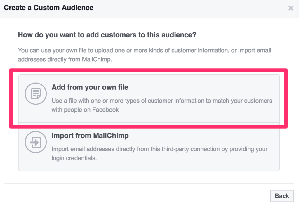 upload your email file to a custom facebook audience